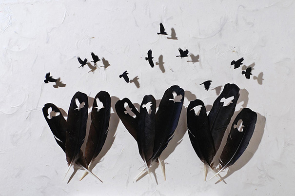 feather-art-christ-maynard-3
